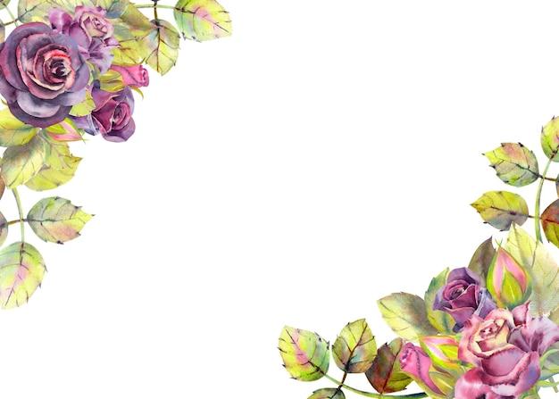 暗いバラの緑の葉の水彩画の花と水平フレーム