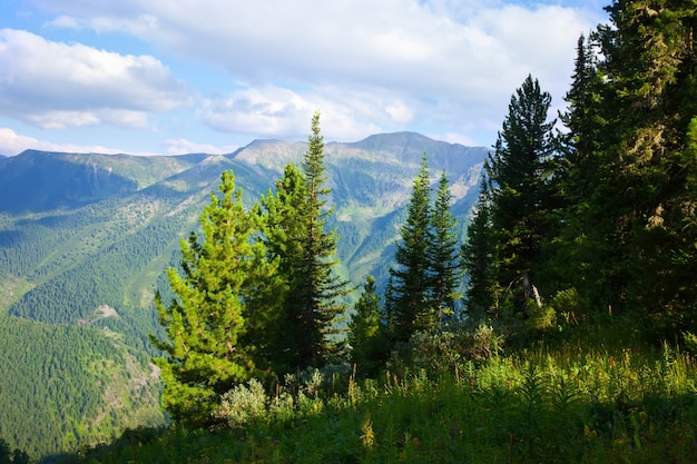 Horizontal mountains landscape