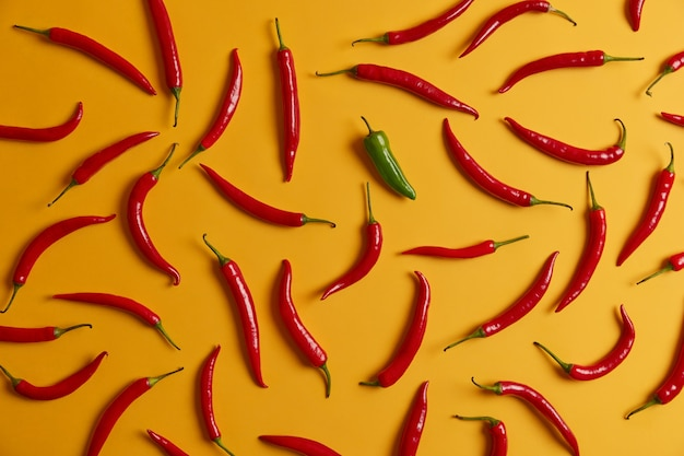Horizontal above shot of hot red chili pepper selection and one green isolated on yellow background. fresh burning vegetables for cooking dinner. flavoring and seasoning concept. rich harvest