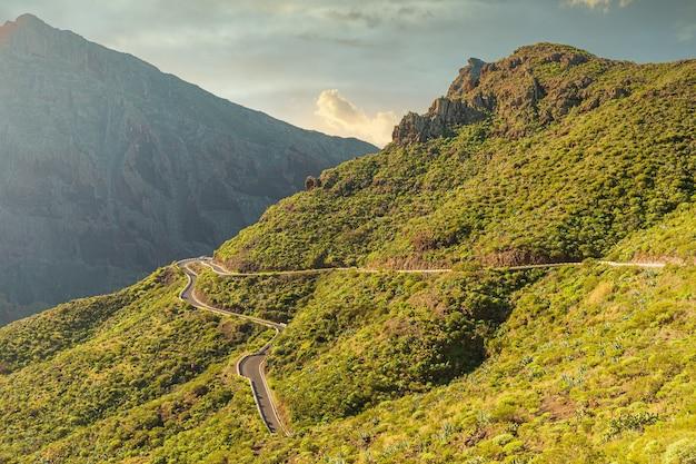 스페인에 위치한 테네리페 섬의 아름다운 녹색 산에 있는 도로의 수평 샷
