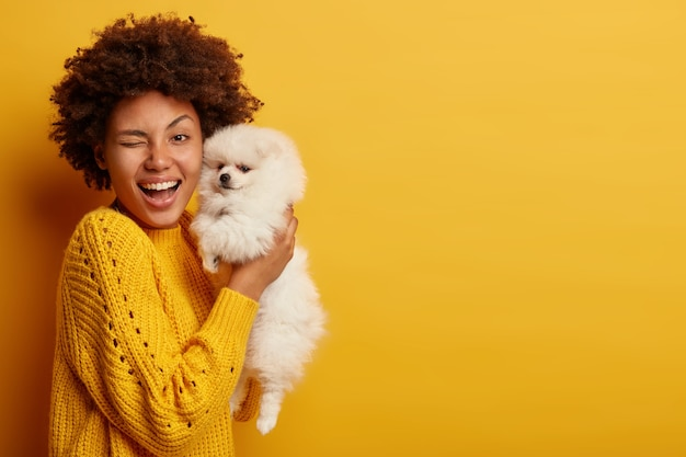 Horizontal shot of optimistic lady winks eyes, happy to buy breed dog, carries white spitz puppy, have fun together indoor, wears knitted jumper, poses indoor against yellow wall.