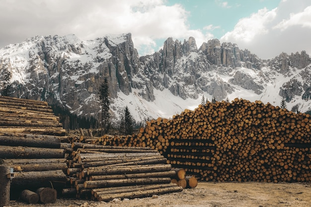 Horizontal shot of a pile of firewood logs with rocky mountains covered in snow