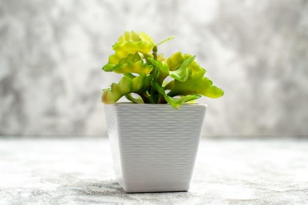 Vista orizzontale del vaso di fiori per la decorazione domestica su sfondo di ghiaccio