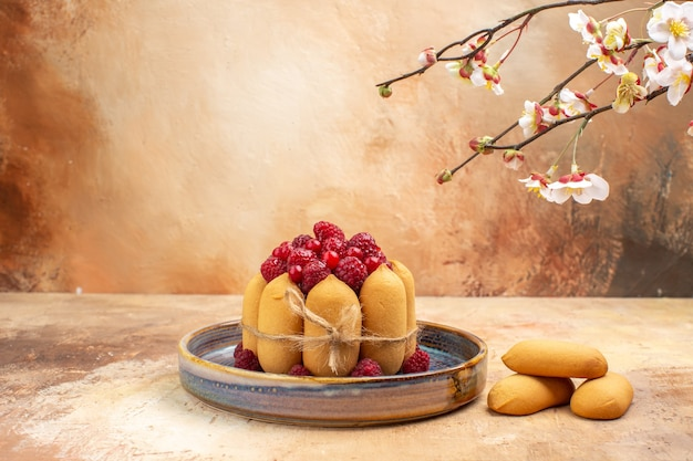 Horizontal view of freshly baked soft cake with fruits and biscuits on mixed color table