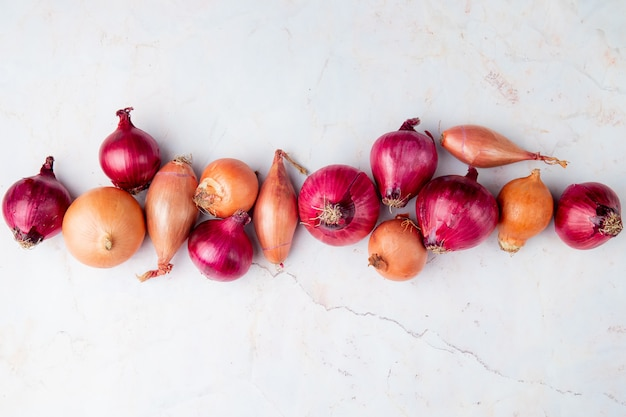 Horizontal view of onions on white background with copy space