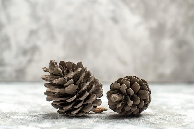 Vista orizzontale di due piccoli e grandi coni di conifere sdraiati su sfondo bianco