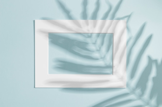 Horizontal white frame with leaf shadow