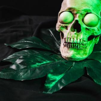 Horror concept with illuminated cranium