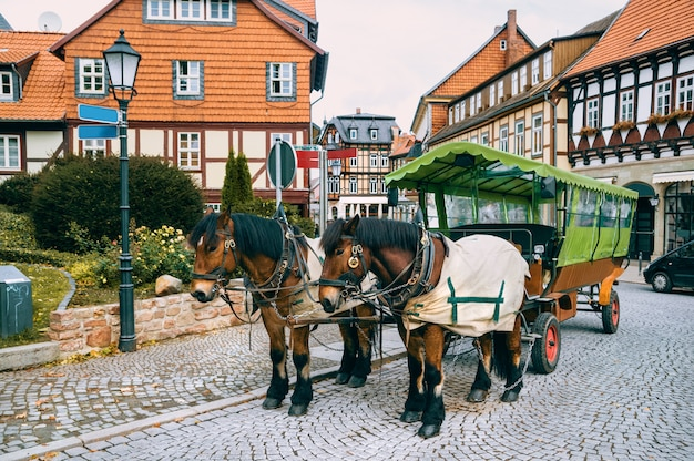 Horse carriage waiting for tour departures in wernigerode, germany