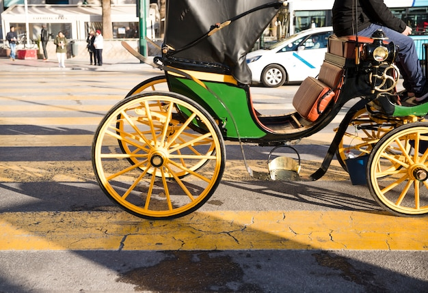 Horse carriages for tourist services on road