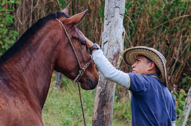 Дрессировщик лошадей нежно гладит лошадь по голове