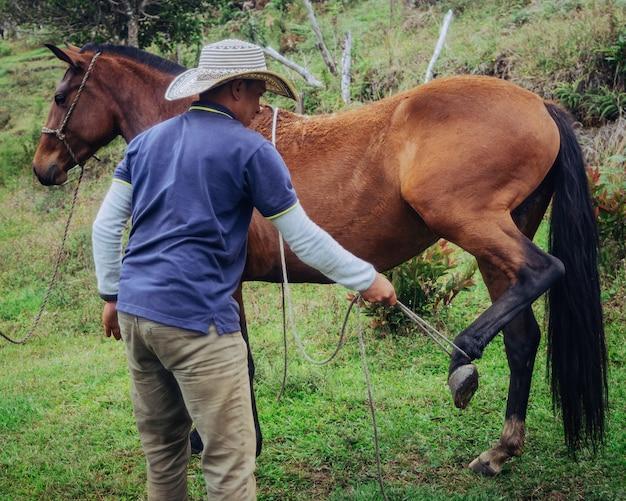 Конный дрессировщик, поднимающий кобылью ногу