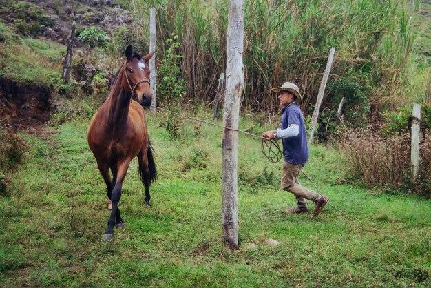 Дрессировщик лошадей тренирует кобылу