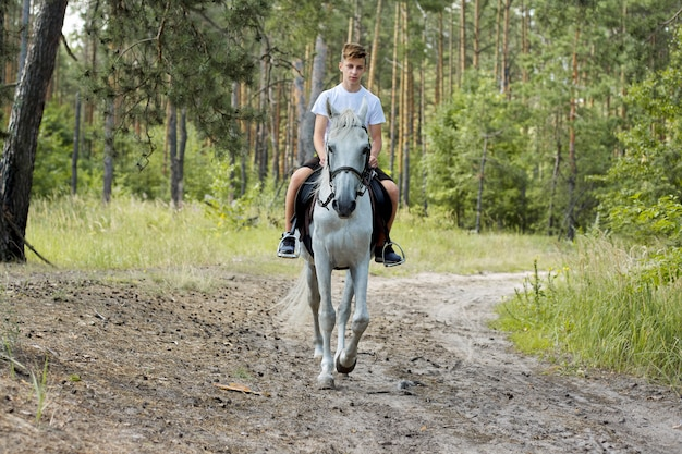 Horse walks, teenager boy riding white horse in summer forest