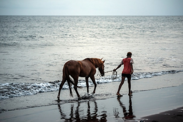 Horse and young boy on sand beach running near water at sunset