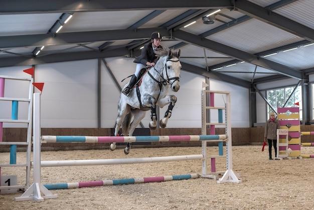 馬サドルにライダーがいるスポーツ用品の馬が障害飛越競技で障壁を飛び越える
