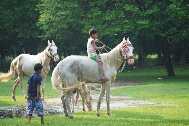 Изображение детей верховой езды в парке