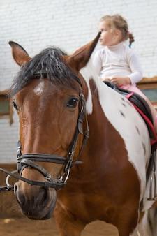 승마. 어린 소녀는 펜에서 말을 타고있다.