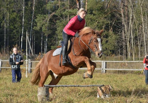 Всадница прыгает через препятствия на пони.