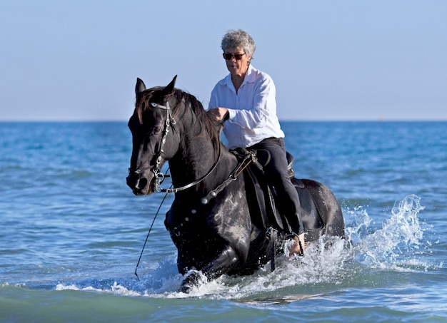 Horsewoman in the sea