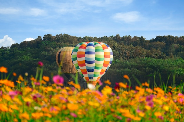Hot air balloon and cosmos field over bright sky.
