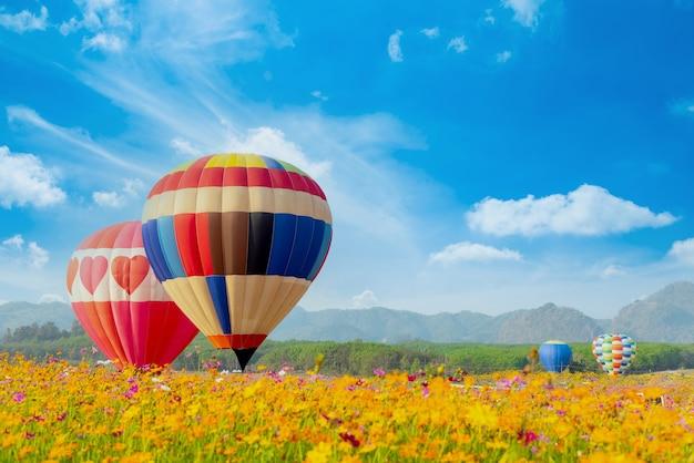 Hot air balloon flying at the natural park and garden