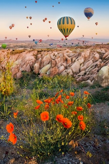 Hot air balloon flying over rock landscape with poppies in cappadocia turkey
