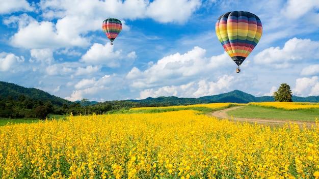 青い空を背景に黄色い花畑の上の熱気球