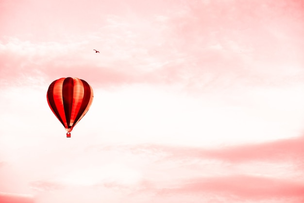 Hot air balloon in summer sunset red sky with copy space. concept of delivery of goods by air