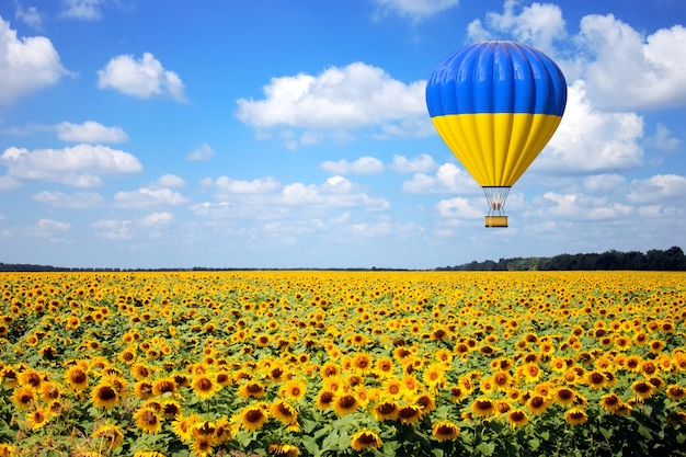 Воздушный шар с флагом украины пролетает над крайним крупным планом поля подсолнухов. 3d рендеринг
