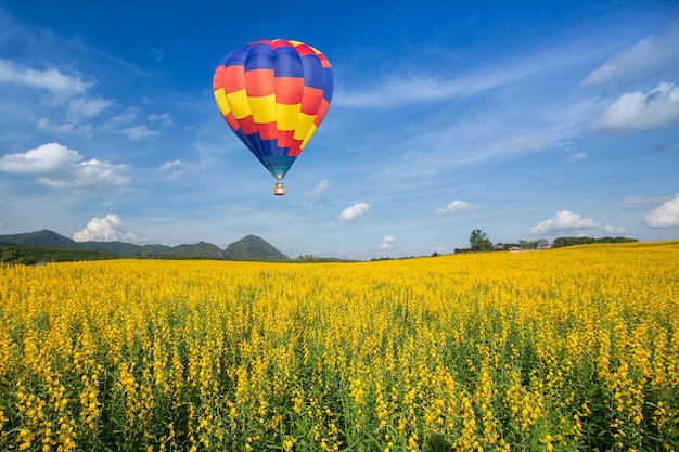 Hot air balloon over yellow flower fields against blue sky Premium Photo