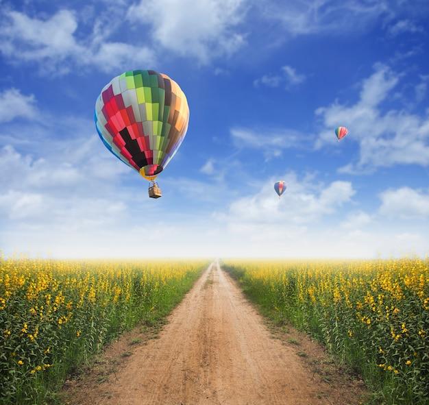 Hot air balloon over yellow flower fields