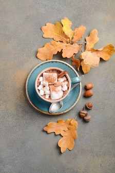 Hot chocolate with marshmallows and autumn leaves on stone or concrete surface