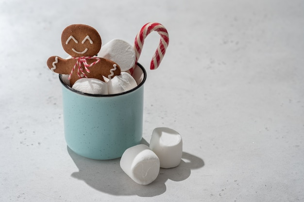 Hot chocolate with marshmallows and gingerbread cookie