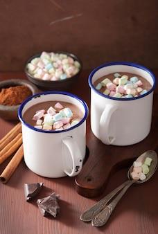 ミニマシュマロシナモンの冬の飲み物とホットチョコレート