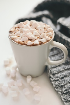 Hot cocoa with marshmallow, cinnamon and spices
