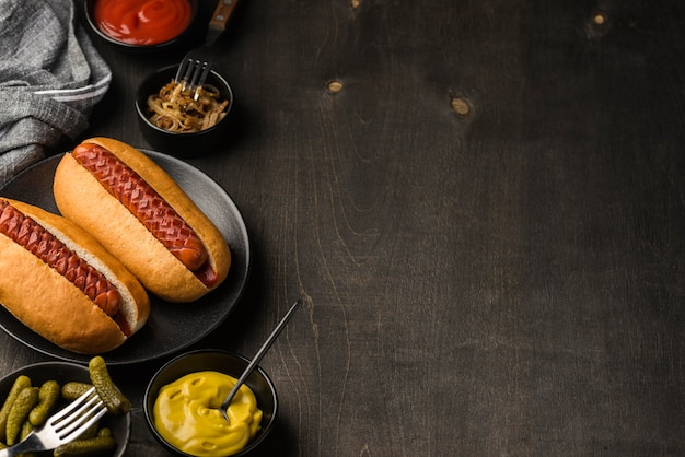 Hot dogs on plate with copy-space