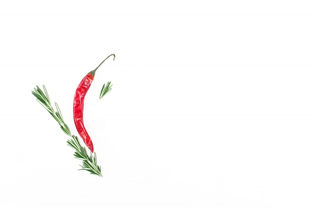 Hot pepper, rosemary and garlic. culinary concept. close-up with space for text.