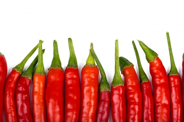 Hot peppers isolated