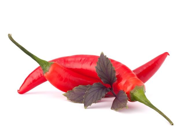 뜨거운 붉은 칠리 또는 칠리 고추와 바질 잎 정물 흰색 배경 컷아웃에 고립