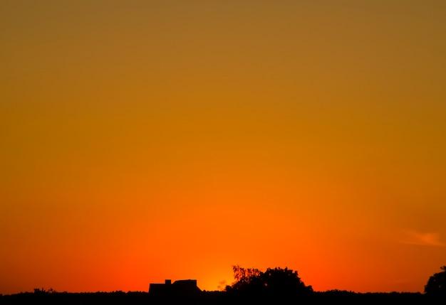 木々、家の暗い輪郭と太陽のロマンチックな背景と熱い夕日の地平線
