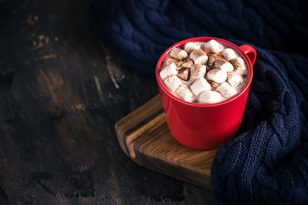 Hot winter or autumn drink, hot chocolate or cocoa, marshmallow and knit sweater