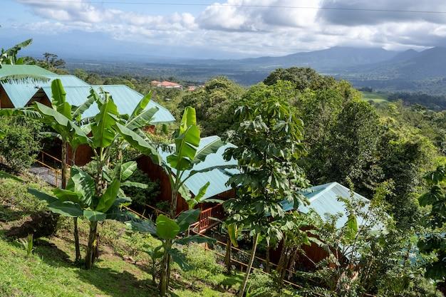 정글 한가운데에 방갈로 세트가있는 호텔. 코스타리카