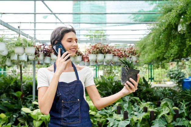 顧客と電話で話している温室労働者