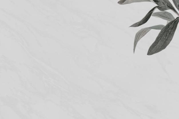 Houndstongue 잎 회색 대리석 배경
