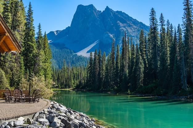 緑豊かな森と山々のある夏の川沿いの家