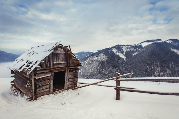House in carpathians