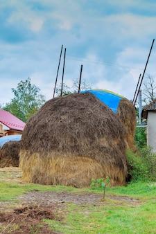 Дом, стог сена в поле, возле леса, в карпатском селе, украина