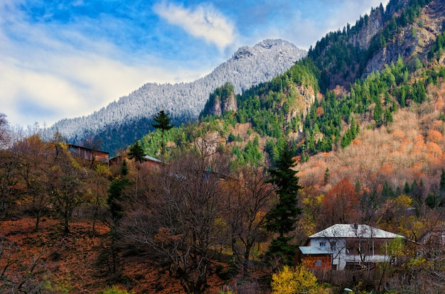 House on hillside surrounded by autumn trees, place of solitude, communing with nature