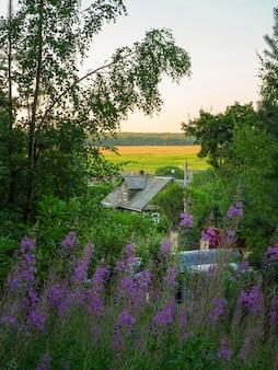 Дом в деревне на равнине. вид сверху.